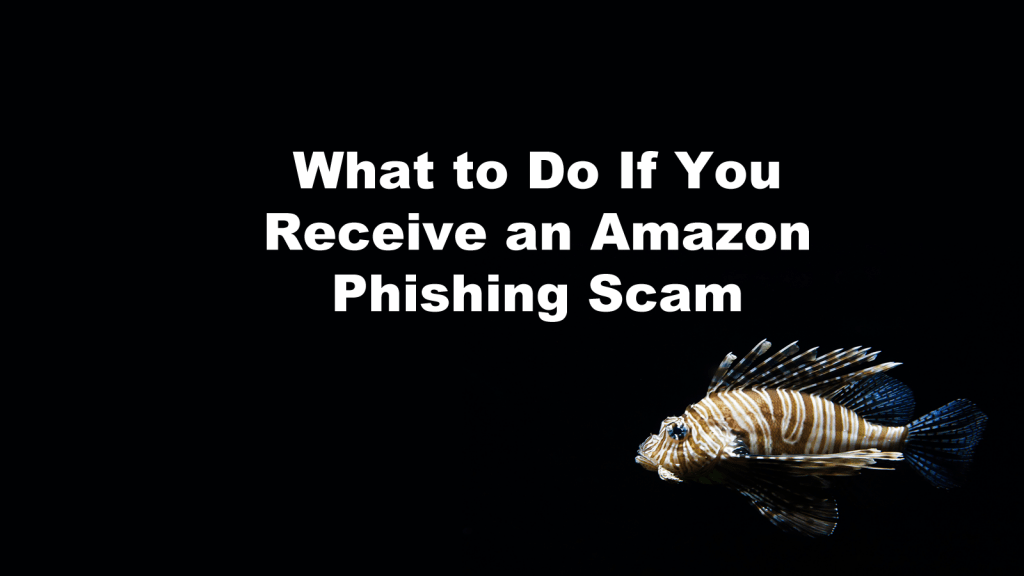 Amazon Phishing Scam