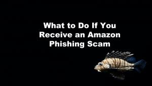 Amazon Phishing Scam