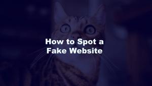 Spot a Fake Website