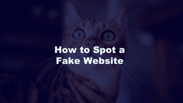 Spot a Fake Website