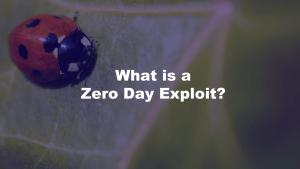 Zero Day Exploit