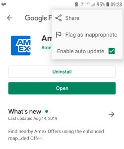 Screenshot Google Play Auto Update